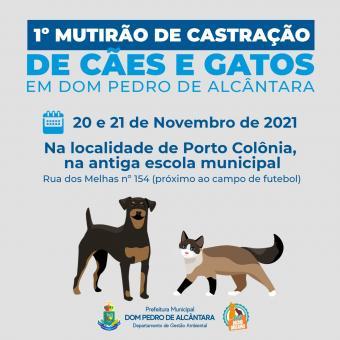 1º Mutirão de Castração de Cães e Gatos em Dom Pedro de Alcântara